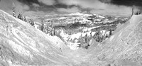 Top of Silverbelt run at Sugar Bowl pano1_bw 3-21-12