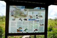 Info signs at entrance to Arusha National Park in Tanzania-03 1-11-12