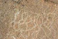 Indian petorglyph at Donner Pass site-07 8-8-07