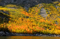 Autumn color at Lake Sabrina near Bishop-06 9-26-09.jpg