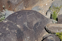 Face petroglyph at Three Rivers Site in NM-02 5-4-10